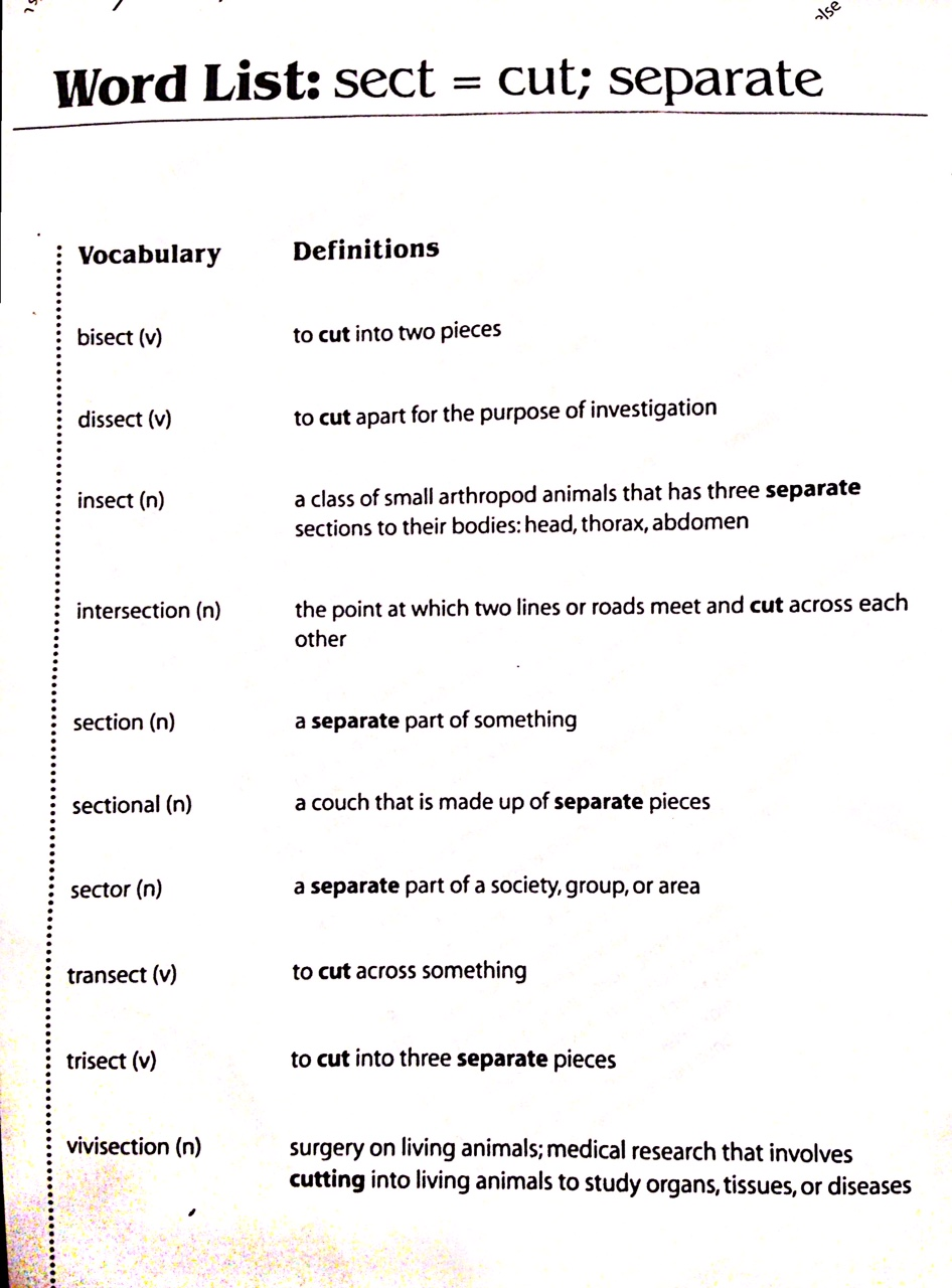 Worksheet Grade 5 Vocabulary Worksheets grade 5 vocabulary words 4th mcgraw hill reading wonders math worksheet wel e to 8th ela mrs harger s class grade